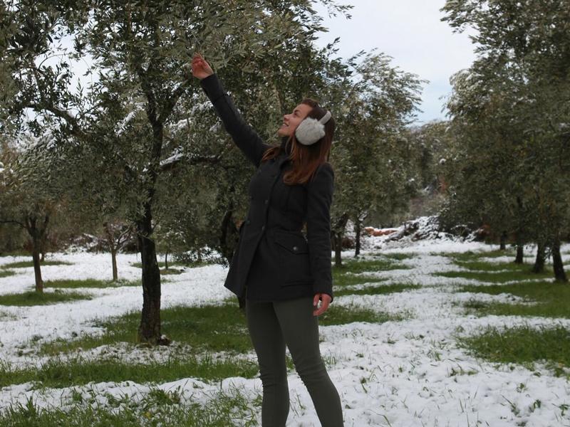 zima_u_masliniku